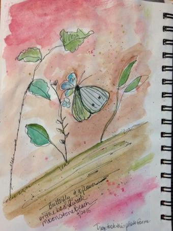 ButterflyJournal